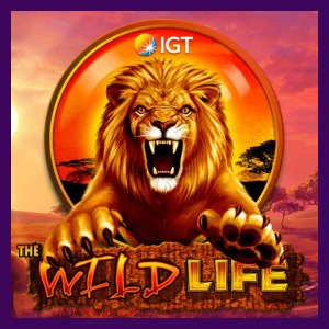 Wild Life Slot Review
